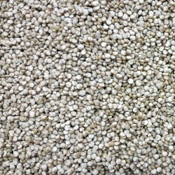 Quinoa 125 GRS.